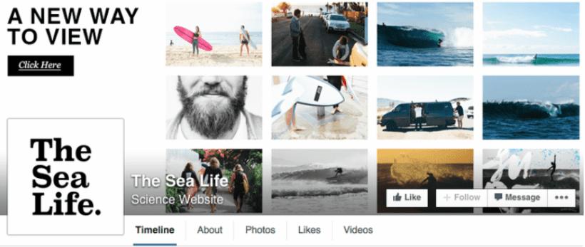 Idee per la tua copertina di Facebook: The Sea Life