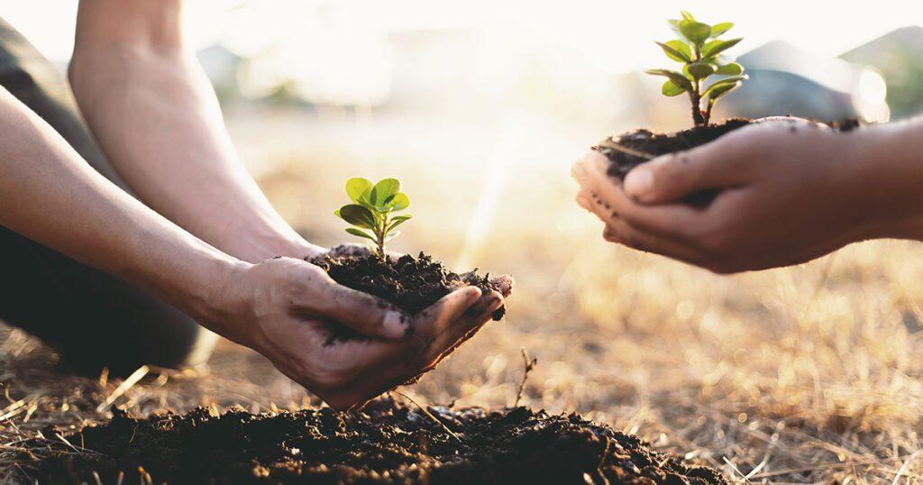 come trovare nuovi contatti e convertirli in clienti grazie alla lead nurturing