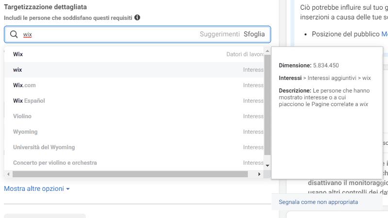 targetizzazione dettagliata in gestione inserzioni di Facebook